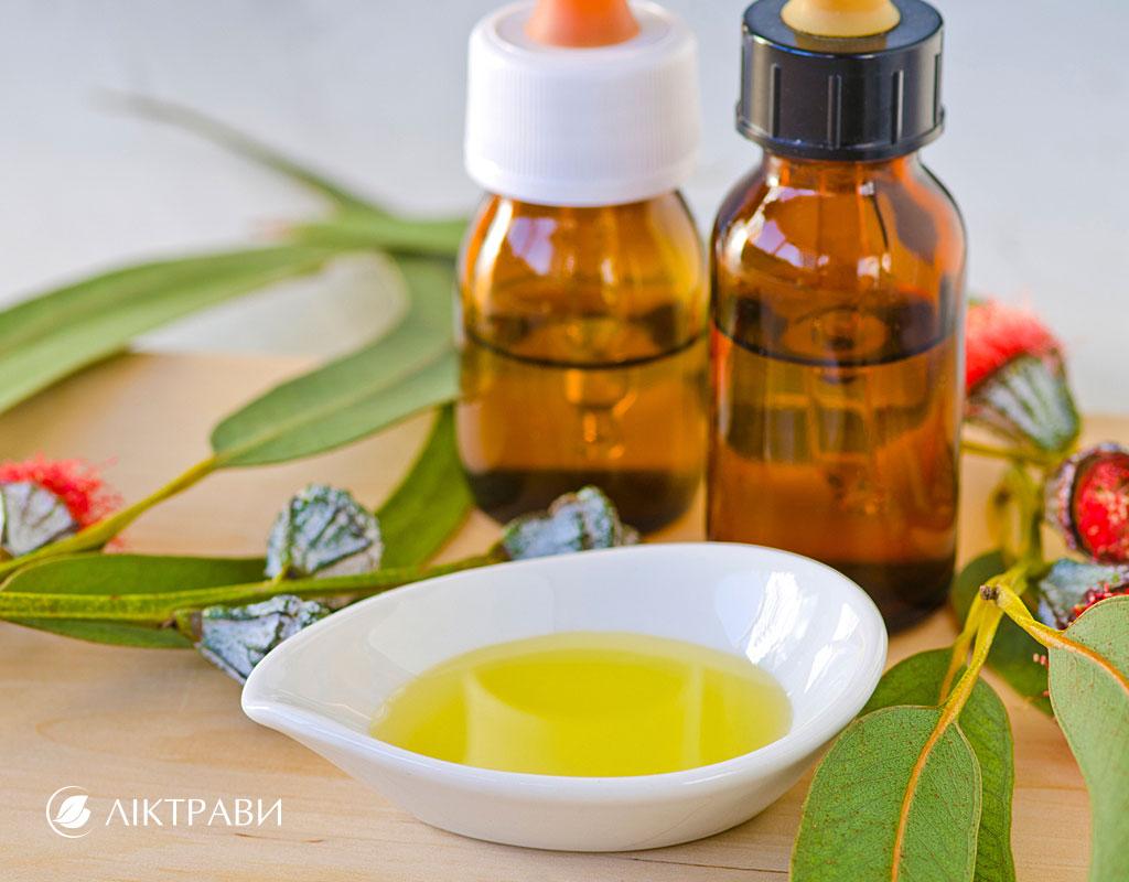 Эвкалипт лечебные свойства в домашних условиях при кашле