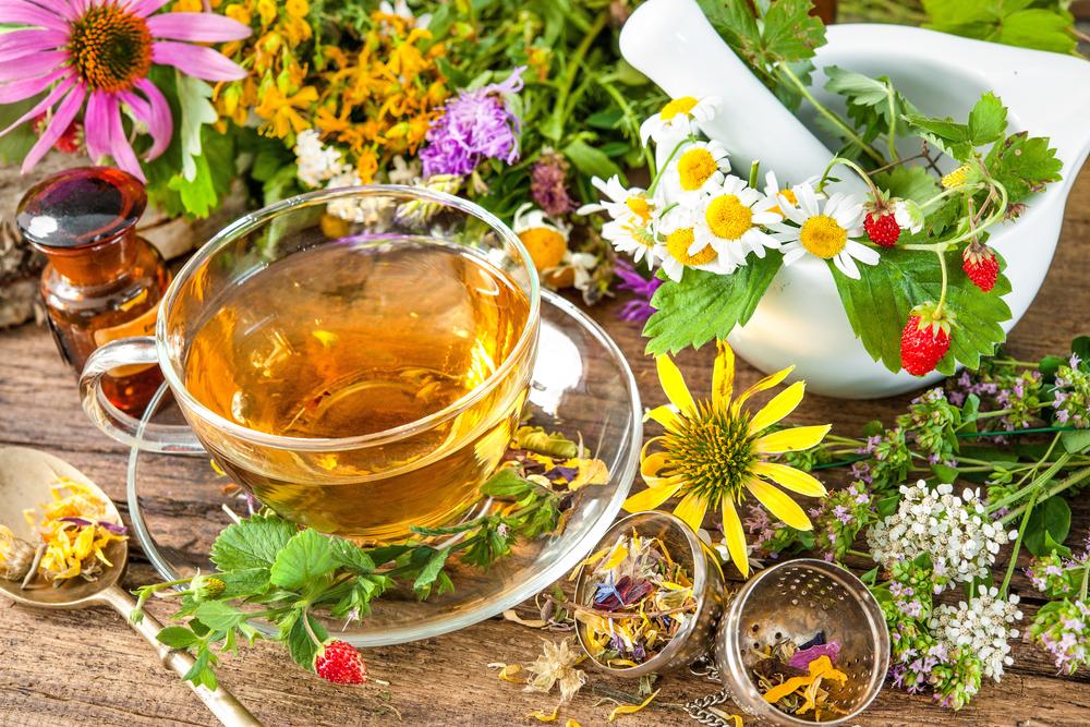 Лечение цистита с помощью растительных средств