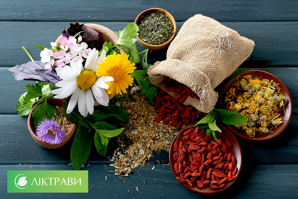Лікування печінки цілющими рослинами