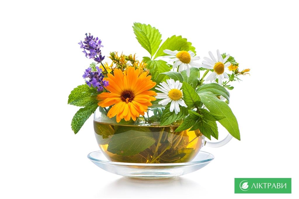 Лікарські рослини проти безсоння