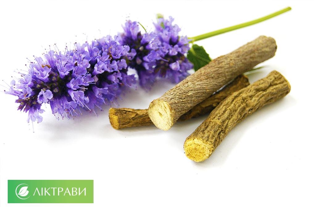 корінь солодки при лікуванні гастриту