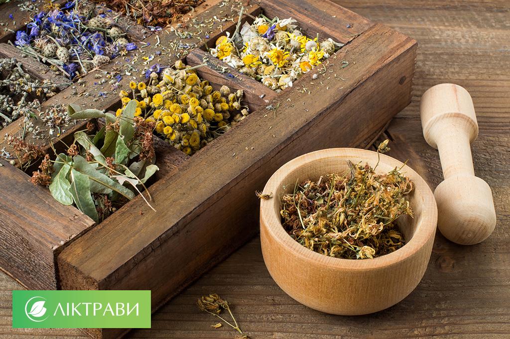 лікувальні трави для очищення судин