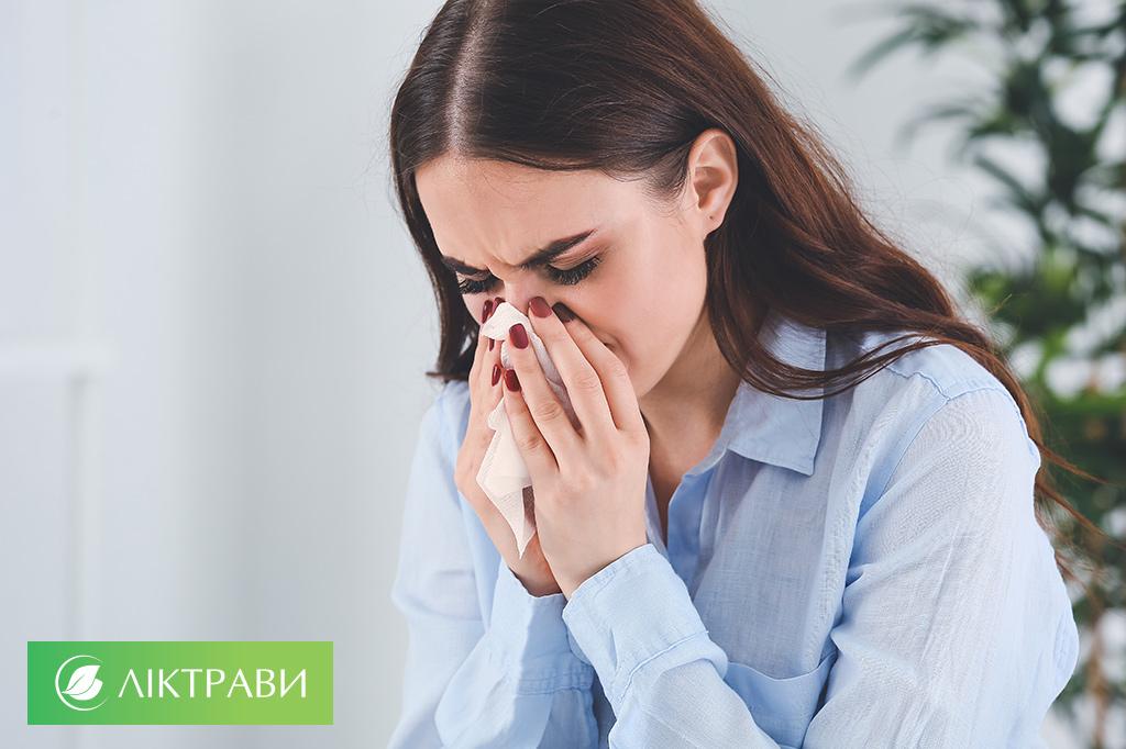лікувальні трави при застуді