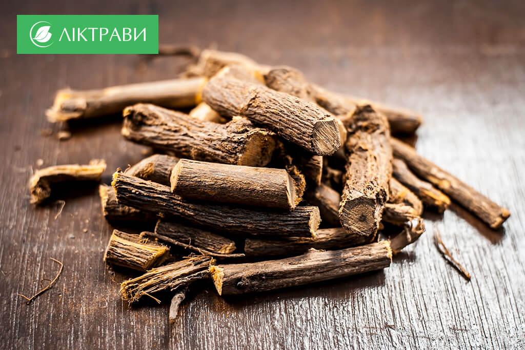 корінь солодки при лікуванні бронхіту